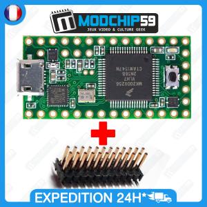 Teensy 3.1 USB MK20DX256